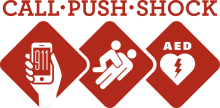 Call-Push-Shock logo